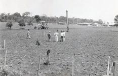 Plantacoes-fazenda-Caseiro.