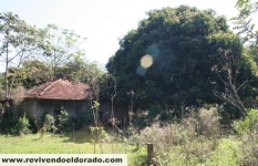 Casas antigas (3)