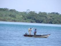 Festa do Peixe - Distrito Morumbi